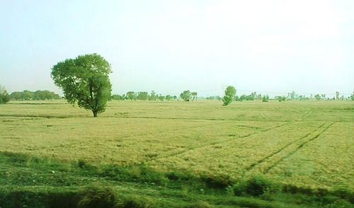 aky-tour-to-satnaur-village